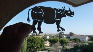 T: Hueckel: Rhino-1, July 2011